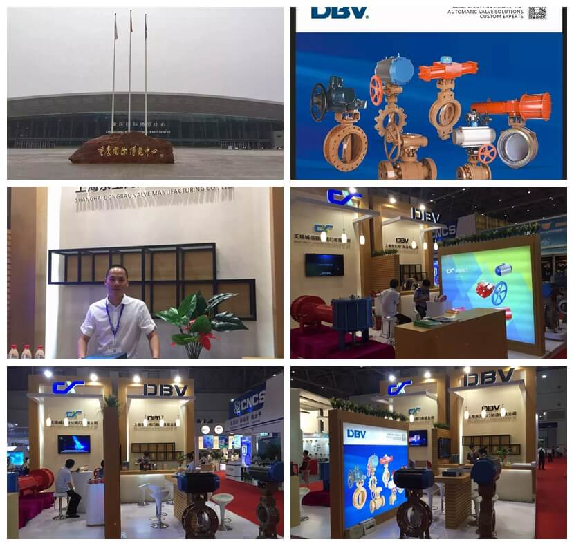 DBV Chongqing International Instrument and Meter Fair