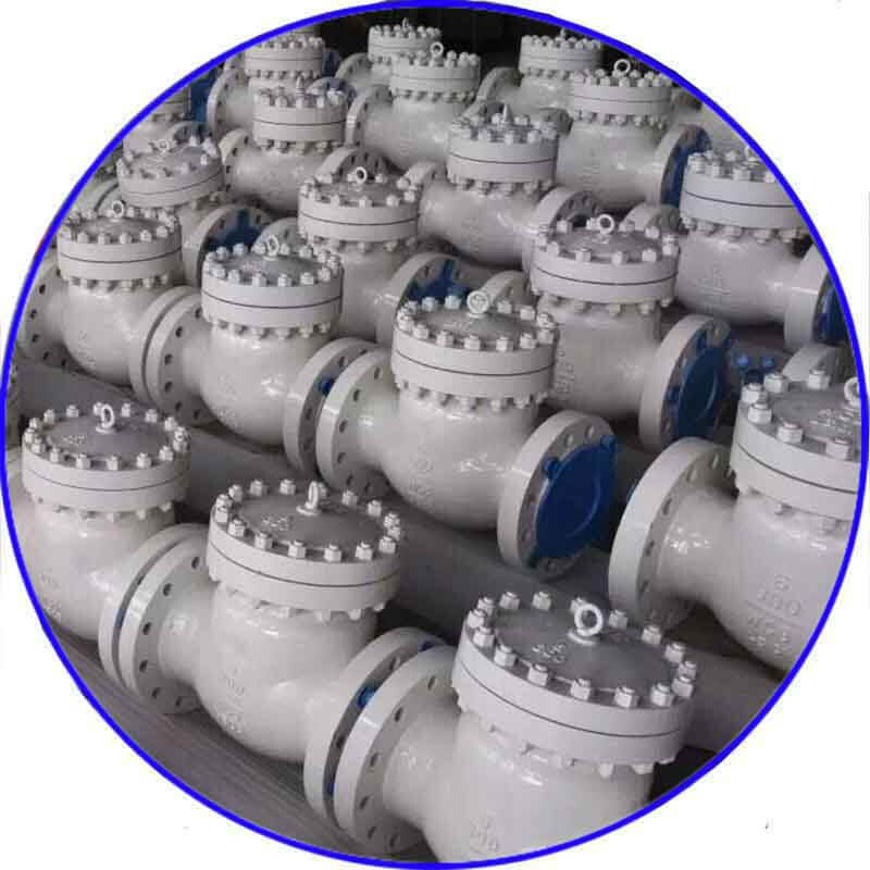 WCB Flanged Check Valve