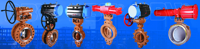 butterfly valves2-4