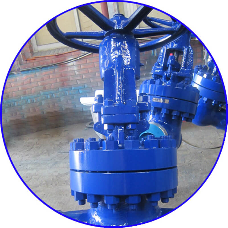 WCB Welded Gate Valve-3