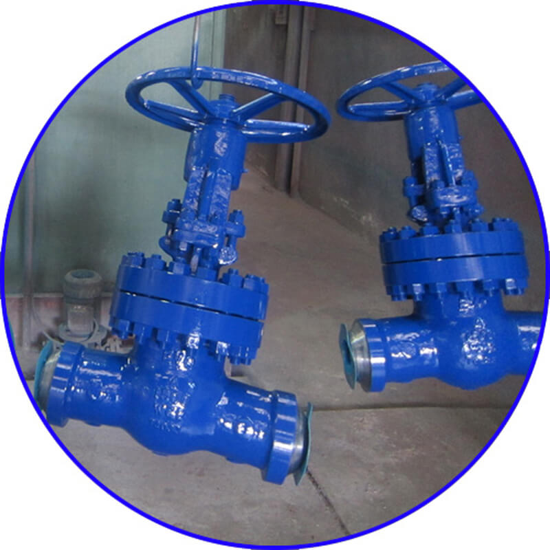 WCB Welded Gate Valve-4