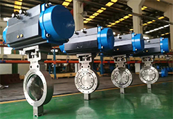 Replaceable Seat Butterfly Valve 2