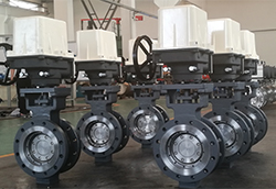 Replaceable Seat Butterfly Valve 3