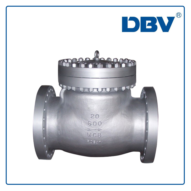 Swing Check valve manufacturer