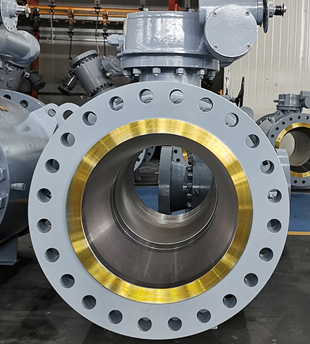 Full bore trunnion mounted ball valve flanged